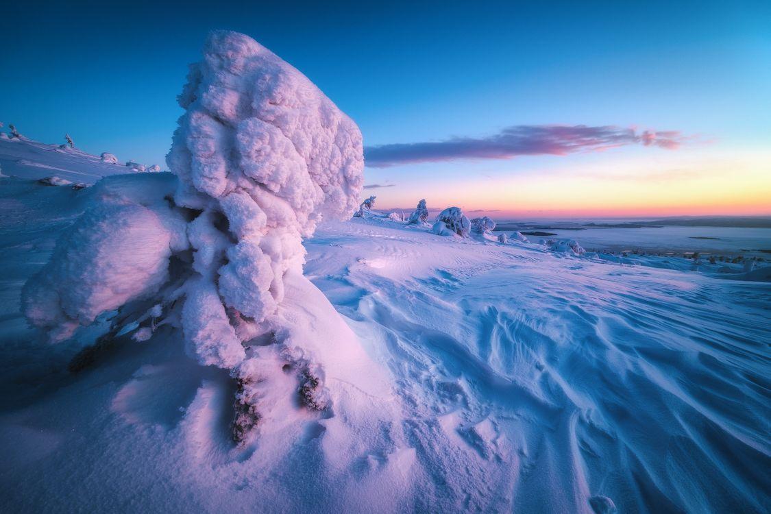 Голубые снега Заполярья · бесплатное фото