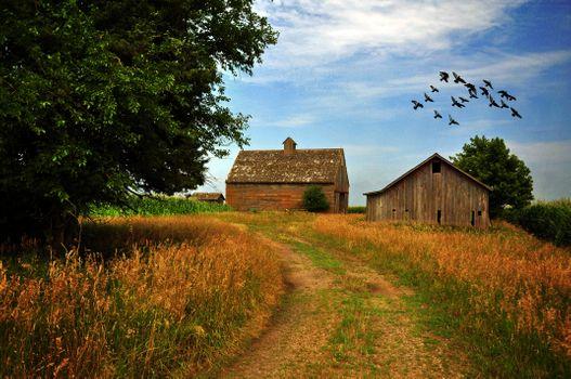 Фото бесплатно дорога, ферма, небо