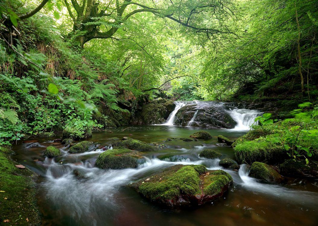 Фото бесплатно водопад, скалы, водоём, речка, лес, деревья, природа, пейзаж, пейзажи