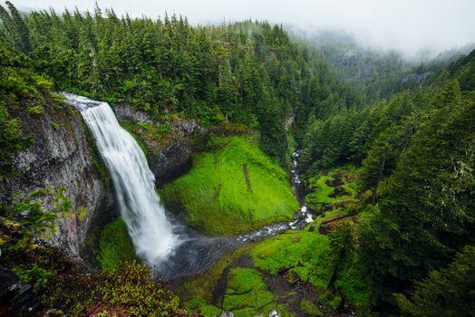 Фото бесплатно красота, лес, природа