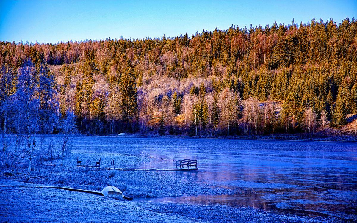 Фото бесплатно лодка, деревья, пейзаж - на рабочий стол