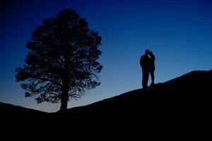 Фото бесплатно ночь, косогор, силуэты