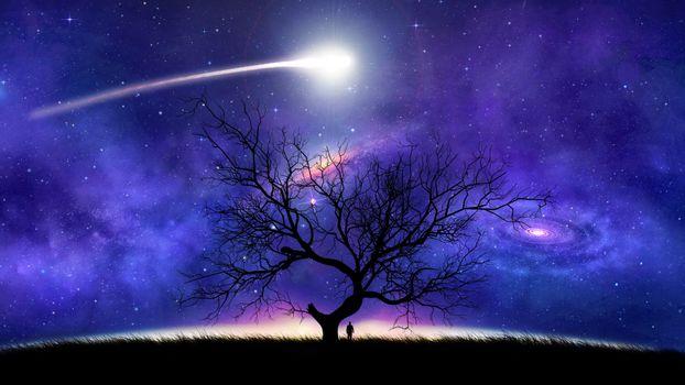 Бесплатные фото ночь,поле,дерево,комета,сияние,свечение,мерцание,космос,art