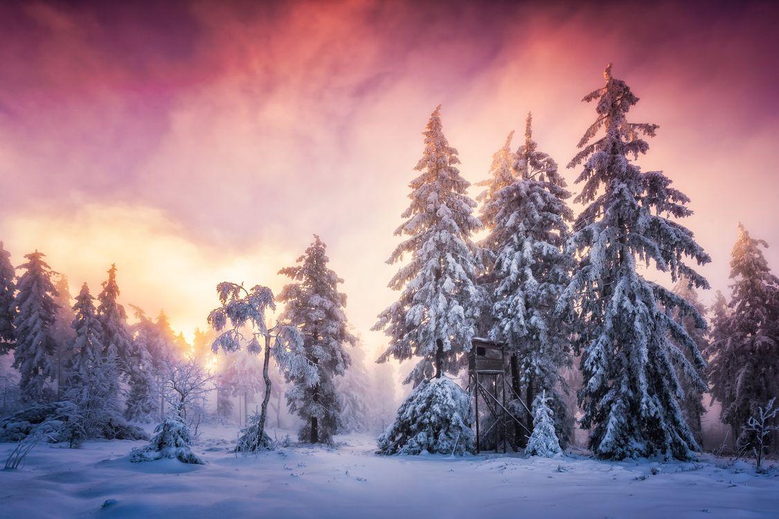 Фото бесплатно winter, snow, Schwarzwald, Baden-Wurttemberg, Germany - на рабочий стол