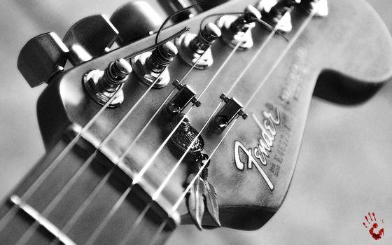Photo free guitars, musical, music