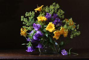 Бесплатные фото натюрморт,ваза,цветы,стол