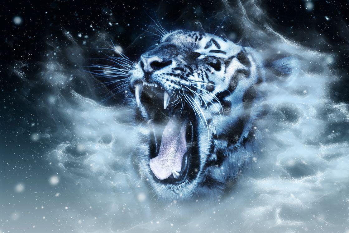 Обои цифровая манипуляция, тигр, живая природа картинки на телефон