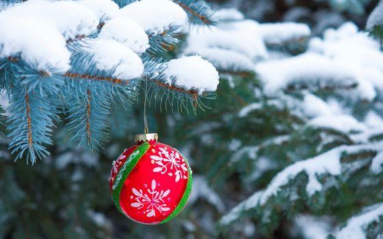 Photo free Christmas decorations, snow, tree