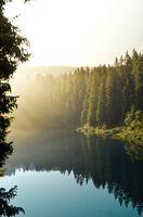 Бесплатные фото природа,лес,Naturidyll,туризм,туман,озеро,вода