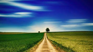 Фото бесплатно горизонт, трава, небо