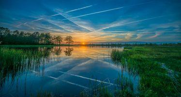 Фото бесплатно закат, пруд, растения