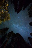 Фото бесплатно дерево, легкий, небо