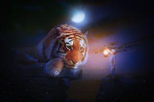 Заставки лунный свет, мальчик, тигр