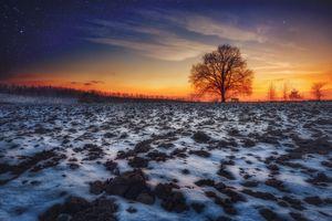 Бесплатные фото закат,поле,пашня,снег,дерево,пейзаж