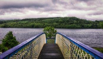 Фото бесплатно мост, река, деревья