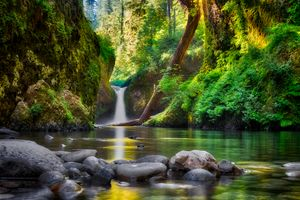 Заставки Punchbowl Falls, Columbia River Gorge National Scenic Area, Oregon