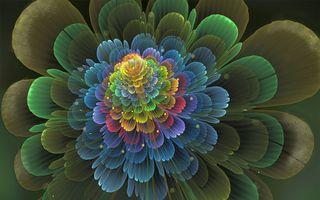 Фото бесплатно цветы, фрактал, арт
