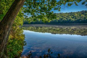Бесплатные фото озеро, лес, деревья, пейзаж