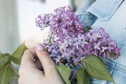 Photo free lavender petals, bouquet, hand