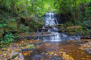 Бесплатные фото лес,деревья,камни,водопад,скалы,природа,пейзаж