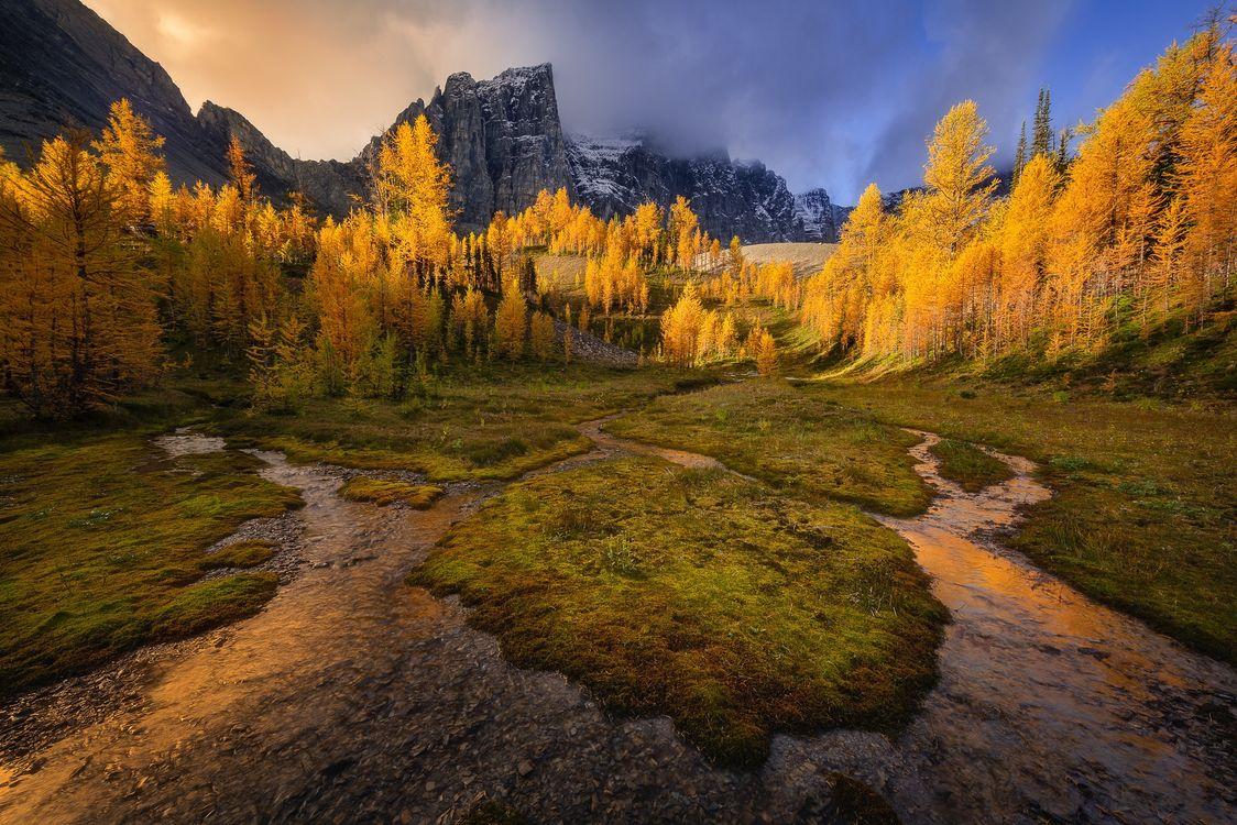 Photos for free Canadian Rockies, Alberta, Canada - to the desktop