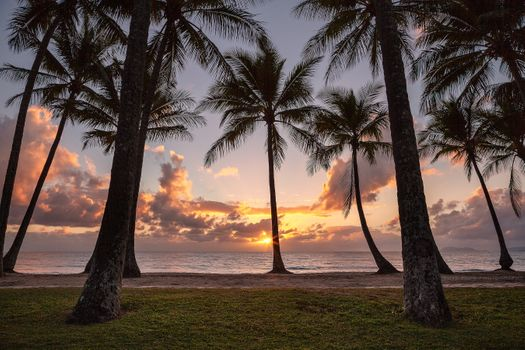 Photo free PALM COVE, Queensland, Australia