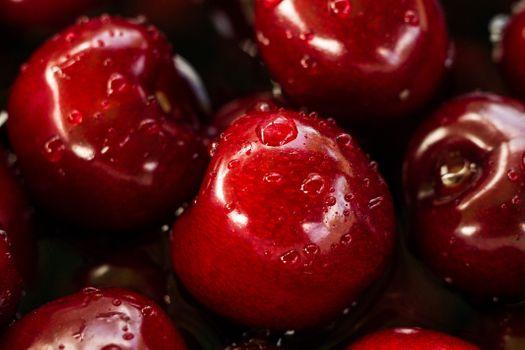Photo free plant, fruit, berry