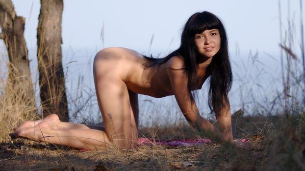 Фото бесплатно собачьи, брюнетка, голая