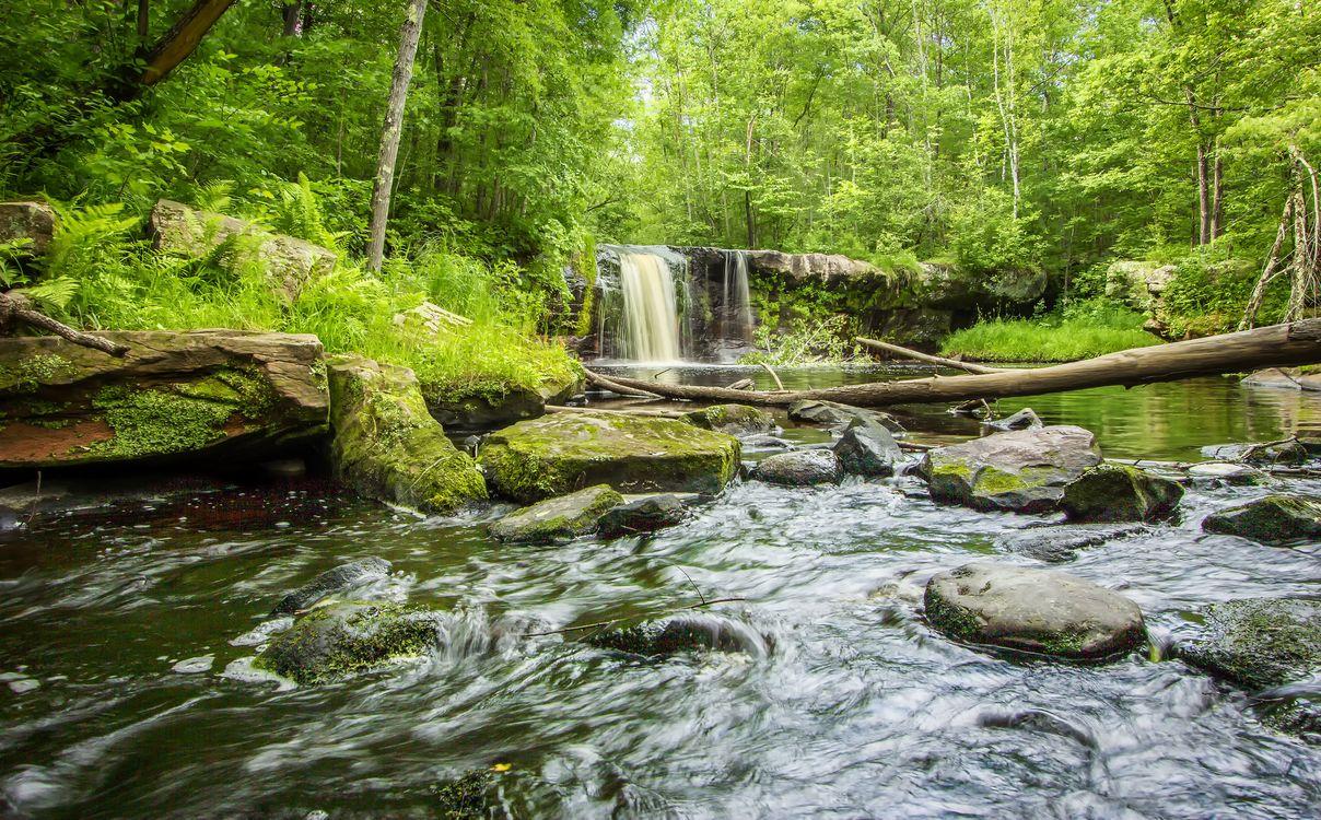 Фото бесплатно Banning State Park, Minnesota, водопад - на рабочий стол