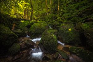 Заставки creek, Gertelbach Waterfall, Schwarzwald