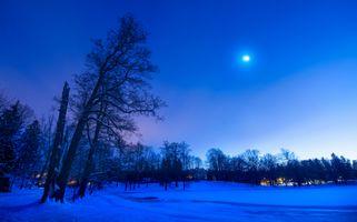Бесплатные фото ночь,луна,зима,снег,парк,деревья,пейзаж