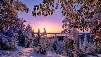 Заставки закат солнца,зима,снег,деревья,озеро,Finland,природа
