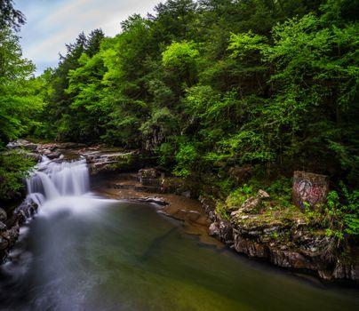 Бесплатные фото водопад,лес,скалы,деревья,природа,пейзаж
