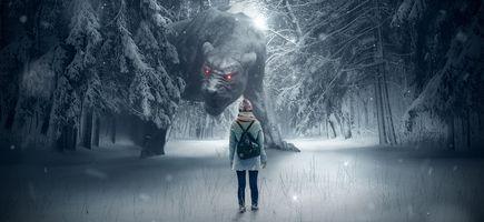 Фото бесплатно фантазия, леса, собака