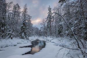 Заставки реки, Kansallispuisto, природа