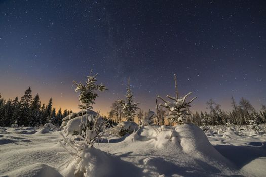 Бесплатные фото зима,сумерки,ночь,снег,деревья,свечение,сугробы,пейзаж