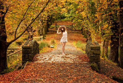 Заставки осень, парк, мост