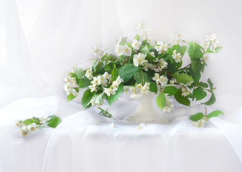 Photo free still life, bouquet, flowers