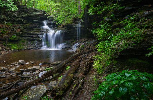 Древняя природа · бесплатное фото