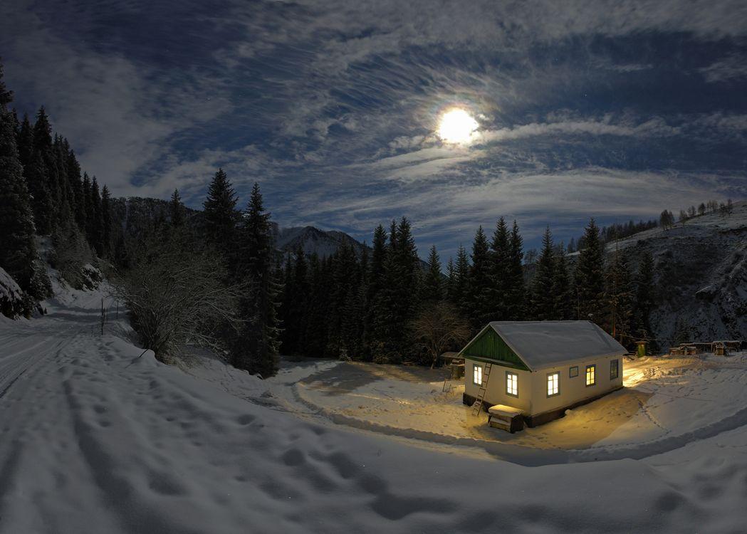 Фото бесплатно ночь, луна, лунный свет, снег, деревья, сугробы, небо - на рабочий стол