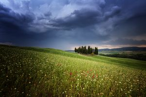 Бесплатные фото Cypress,Italien,Rain,Toscana,поле,цветы,деревья