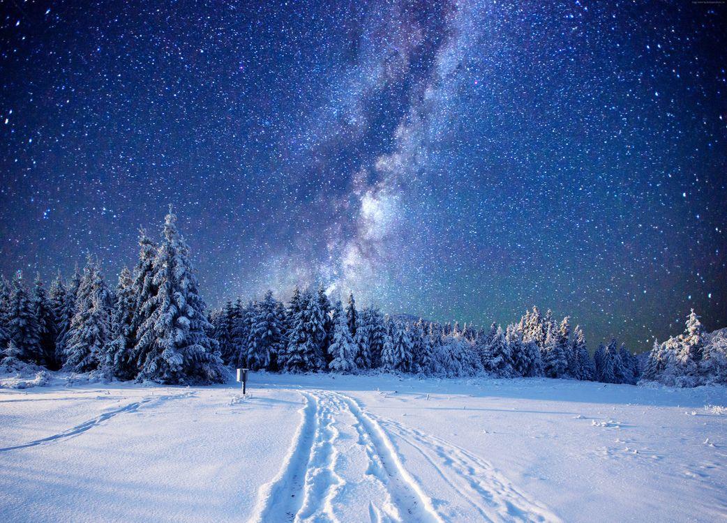 Фото бесплатно зима, ночь, свечение, сияние, снег, деревья, сугробы, природа, пейзаж, пейзажи