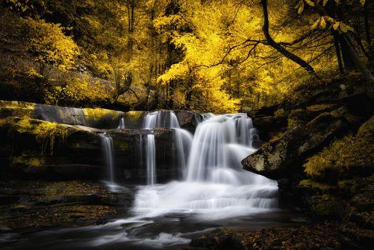 Morning waterfall · free photo