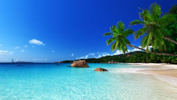 Photo free tropical, beach, ocean