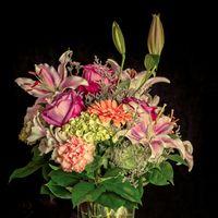 Фото бесплатно цветы, растений, цветение