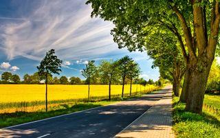 Фото бесплатно поле, природа, дороги