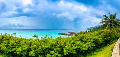 Бесплатные фото Beach,Таити,Французская Полинезия,море,пальмы,пейзаж