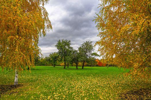 Photo free autumn, Park, autumn leaves