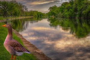 Фото бесплатно Сан-Антонио, Техас, США