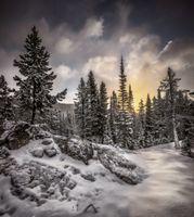 Бесплатные фото Rocky Mountain National Park, зима, закат, снег, лес, деревья, пейзаж